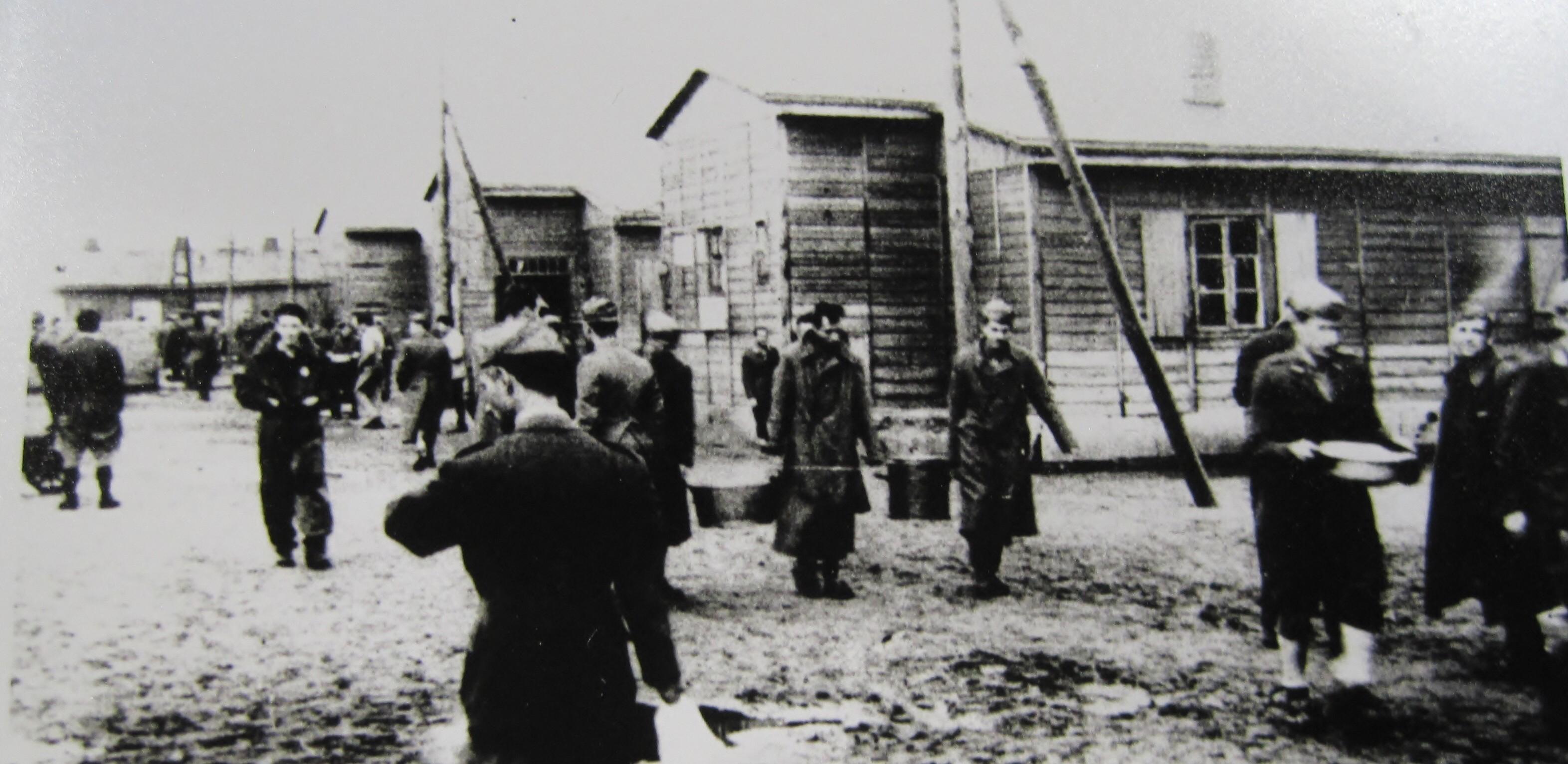 IMI. La storia degli internati militari italiani